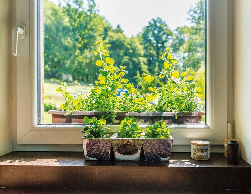 Okrasná záhrada abylinky sú ďalšou Patríciinou srdcovkou. Niet sa čo čudovať, keď vjej obchodíku nájdete vponuke aj sušenú levanduľu.