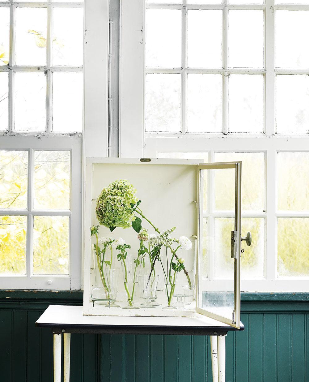 Na okne Staré a (takmer) nepotrebné okienko, vitrína alebo aj obyčajná skrinka môžu byť miestom, kde možno zhromaždiť tie najkrajšie kvety nazbierané v záhrade alebo aj na lúke a vytvoriť z nich originálnu, aj keď len dočasnú zbierku. Rôzne sklené banky, nepoužívané vázy a poháre výborne poslúžia na tento účel. Do každej nádoby dajte jeden kvet a nezabudnite do vody pridať výživu na rezané kvety. Kompozícii vyhraďte miesto bokom od dopadajúcich slnečných lúčov.