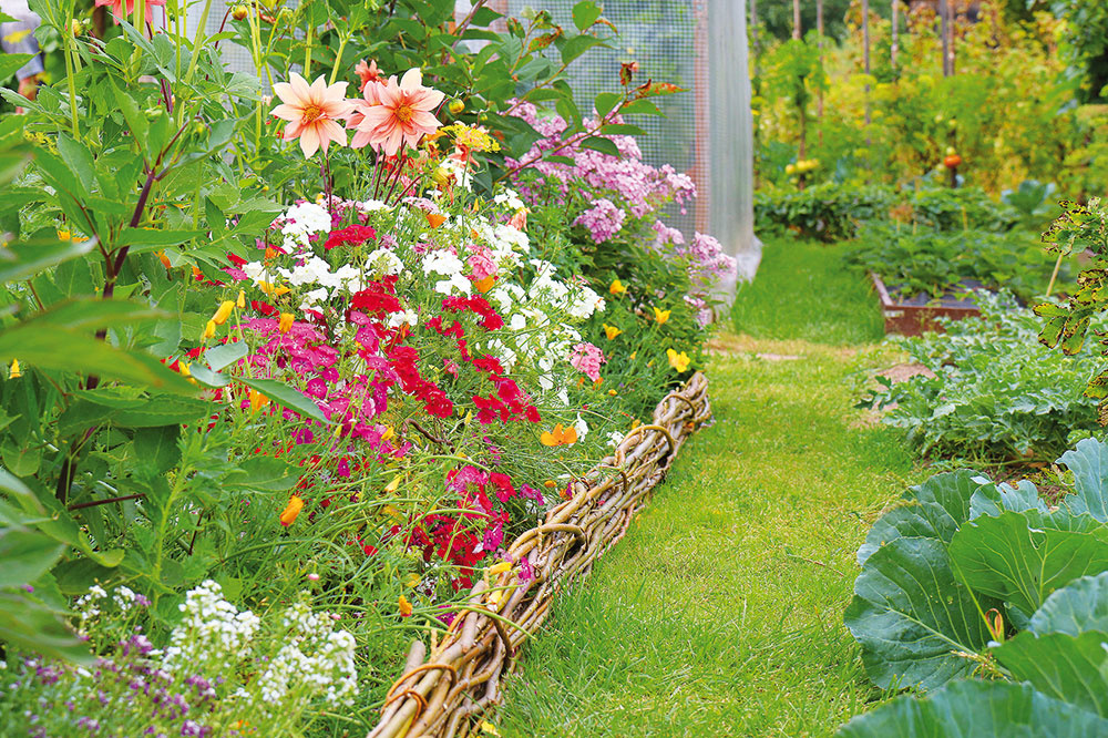 Zabudnite na betónové obrubníky, vtakejto záhrade by nepôsobili prirodzene. Oveľa lepšou voľbou je prútie, ktoré vám zostane napríklad po reze drevín. Takýmito nízkymi prútenými plôtikmi olemujte väčšie aj menšie záhony, prípadne aj solitérne rastliny – vyzerá to skvelo. Je to mimoriadne zaujímavý prvok, hoci nie dlhoveký.