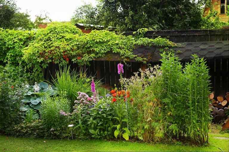 Netradičné prírodné ploty pre olemovanie záhradných záhonov