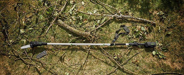Ako skrotiť stromy a kríky na záhrade