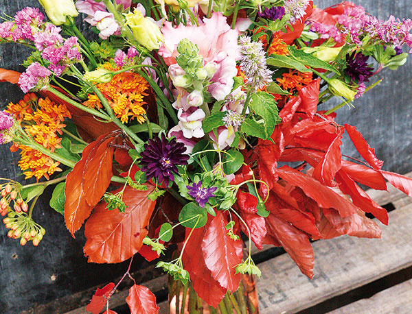 Privítajte jeseň vo svojej domácnosti pestrou kyticou