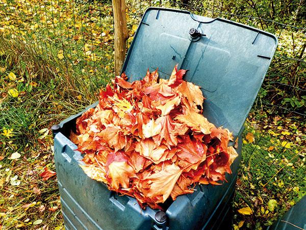 Veľký jesenný manuál do záhrady