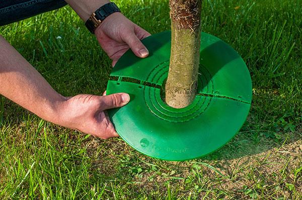 TreeGuard - Revolučná ochrana stromov