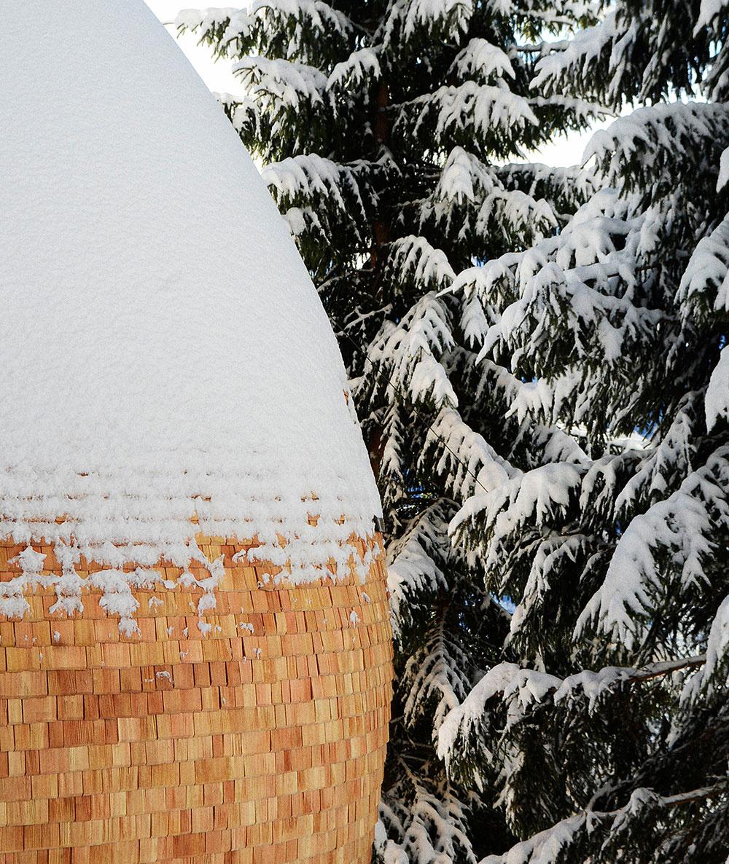 Jedinečný dom na strome postavili v tvare šišky!