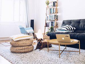 Dvojizbový byt s vysokými stropmi, čistými líniami a prírodnými materiálmi