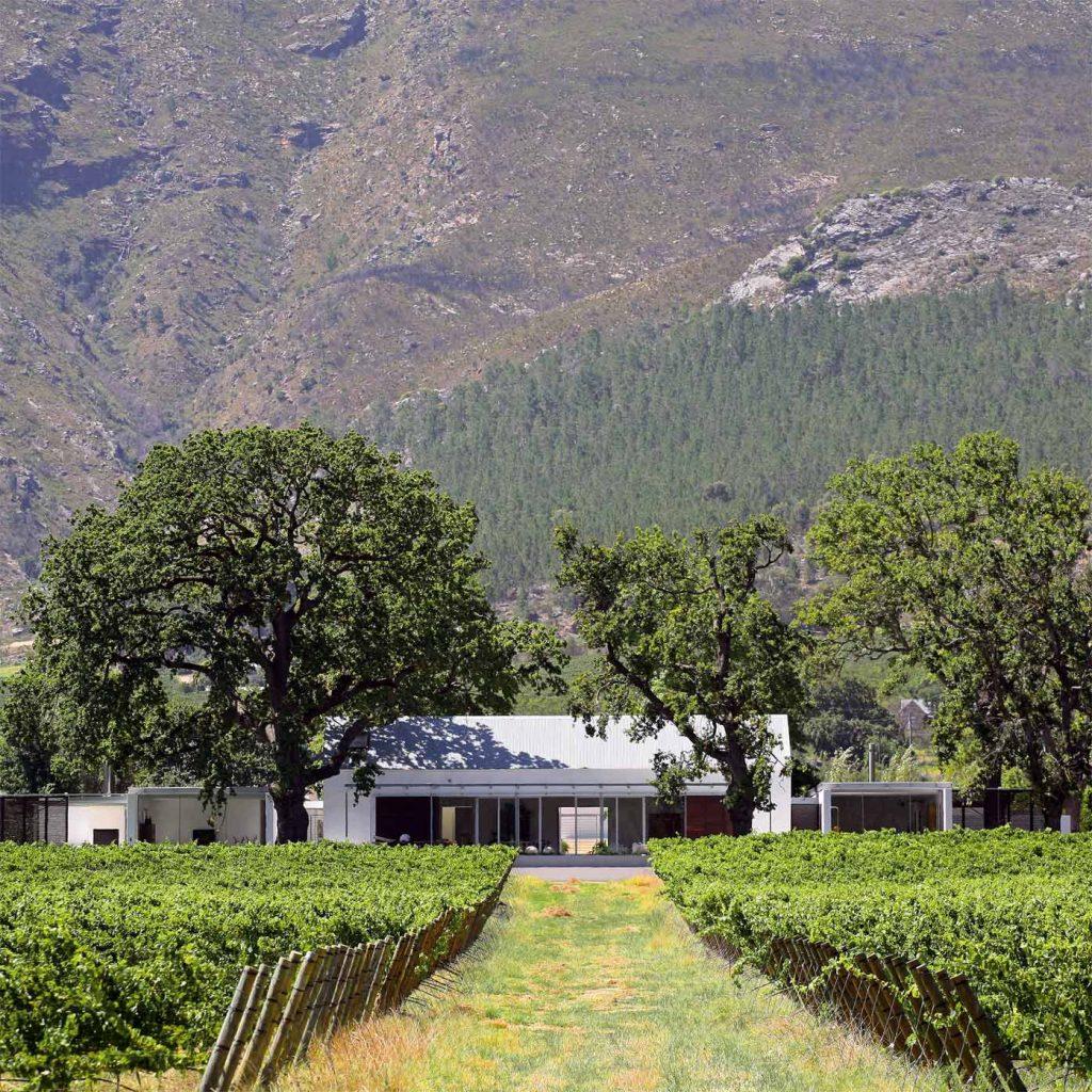 Bývanie s vinohradom