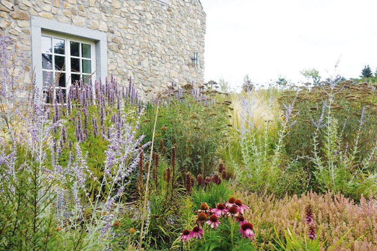 Dynamické trvalkové záhony a ich uplatnenie v záhradách