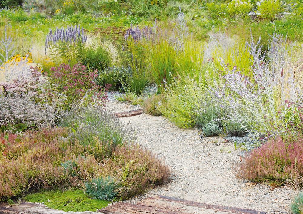 Vstrede kompozície idiania. Dynamické záhony vzáhrade boli navrhnuté zo 42 druhov trvaliek atráv azo šiestich druhov cibuľovín tak, aby kvitli počas celej sezóny. Rastliny nevynikajú len kvetom, ale tiež kontrastnými textúrami listov aštruktúrou kvetov vkombinácii výrazných trvaliek ajemných tráv.