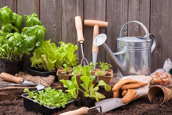 Ušetrite až tisíce eur na nákupoch záhradníckych a hobby potrieb