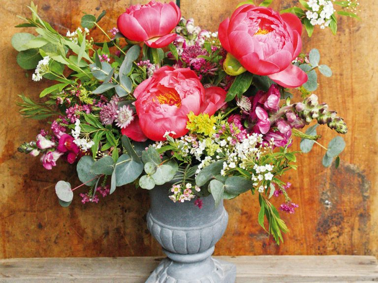 Romantická kytica z pivoniek a papuliek