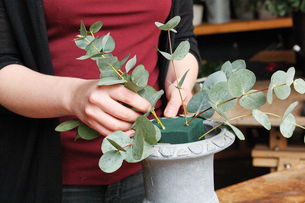 3 Najprv do hmoty zapichnite eukalyptus, aby ste urobili základnú kostru aranžmánu. Odstráňte zeukalyptu spodné listy, prispôsobte jeho dĺžku azapichnite do hmoty.