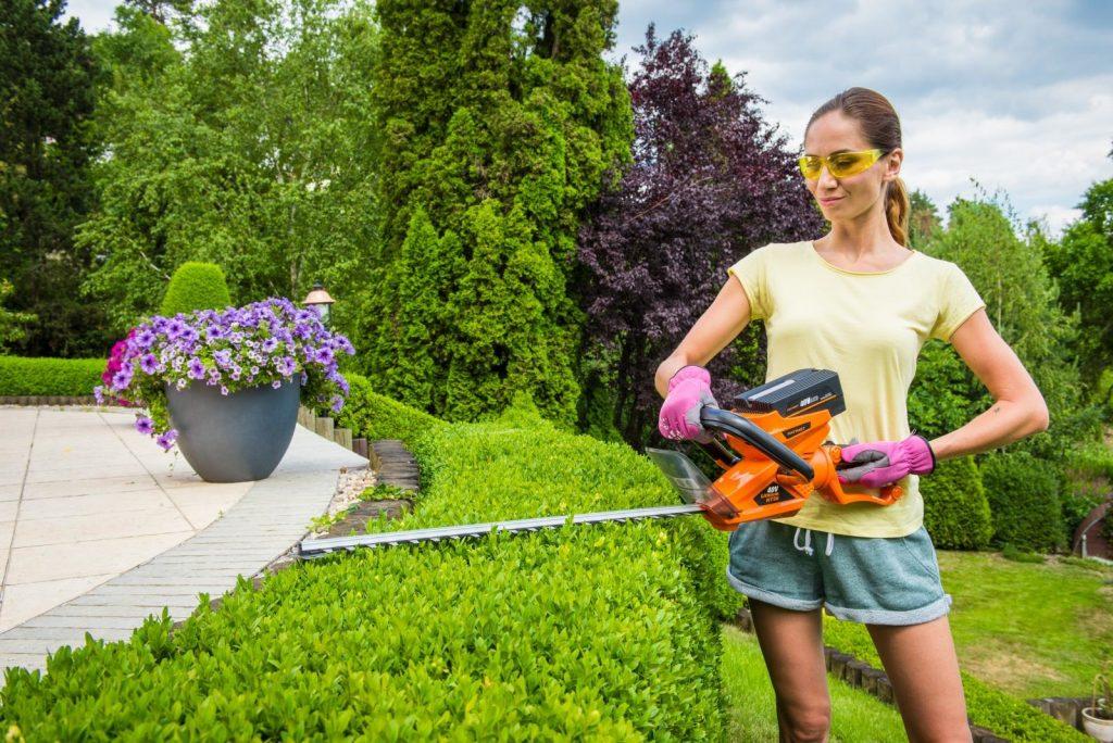 Krásne upravená záhrada po celé leto – pomôže AKU pomocník