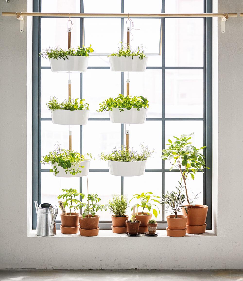 Začnite oknami  Premeňte miesto na okne na malú záhradku. Záhrada na okne neznamená len odloženie rastlín na okenný parapet – ide oto, využiť čo najviac prirodzeného svetla na vypestovanie zelenej oázy uprostred vášho domova.