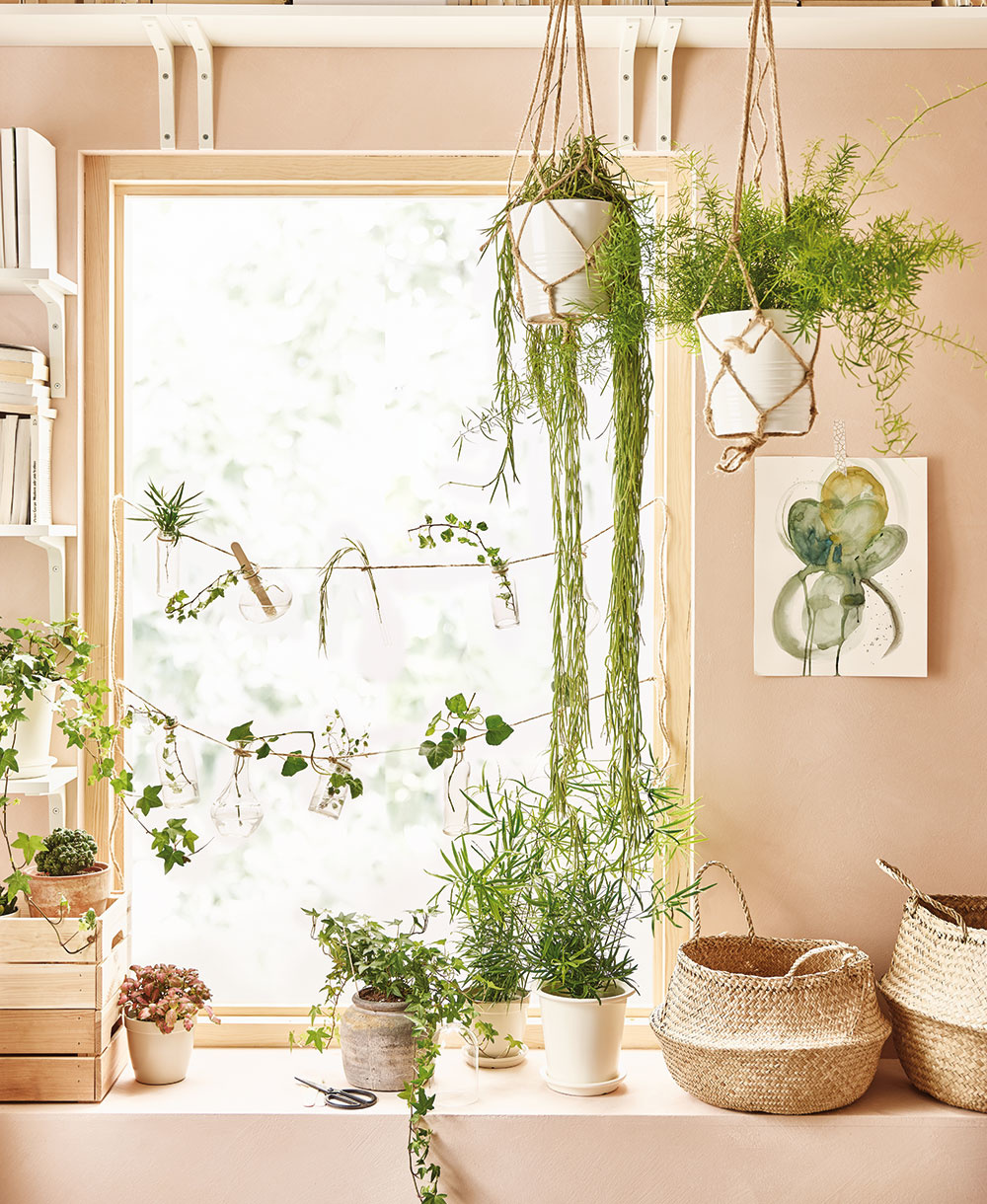 Využite steny astrop  Vnepraktických priestoroch rastliny umiestnené vo výške vnesú do priestoru zeleň bez toho, aby zaberali vzácny priestor. Stačí, ak použijete hák, ktorý je dostatočne pevný na to, aby uniesol hmotnosť rastliny. Nezabudnite sa presvedčiť, že kvetináče, ktoré zavesíte, dobre zadržiavajú vodu.