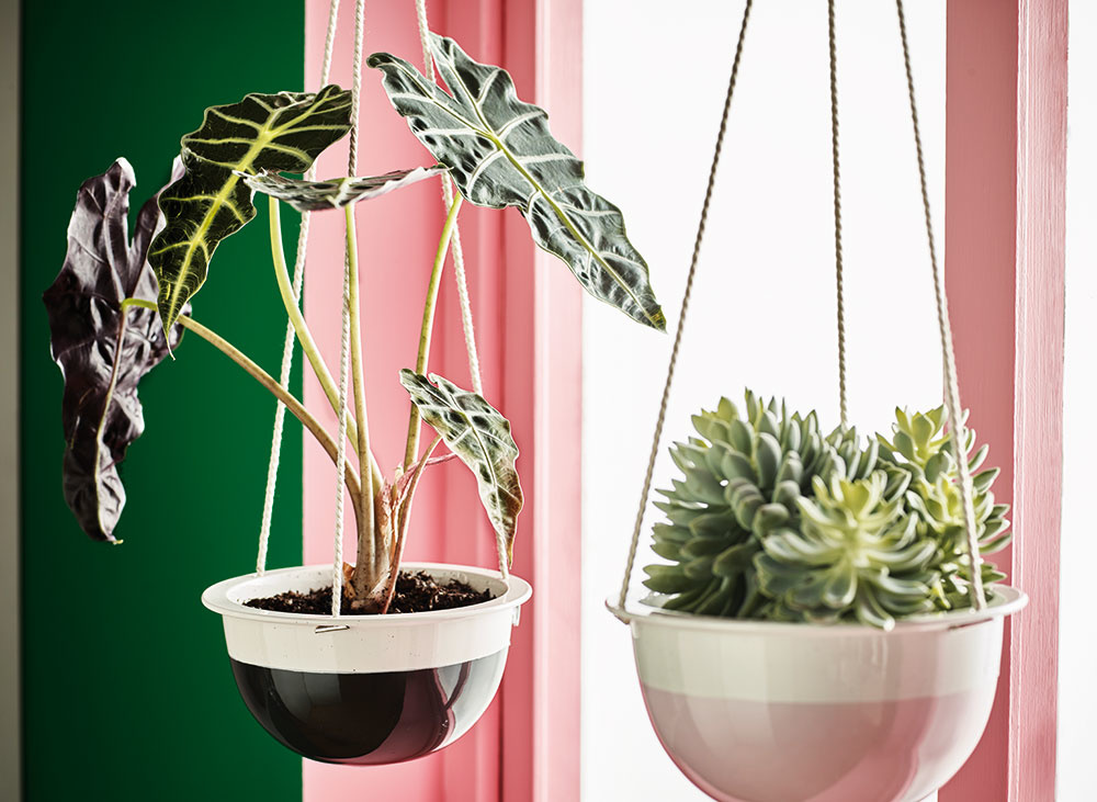Ako si v byte vynahradiť absenciu záhrady či terasy