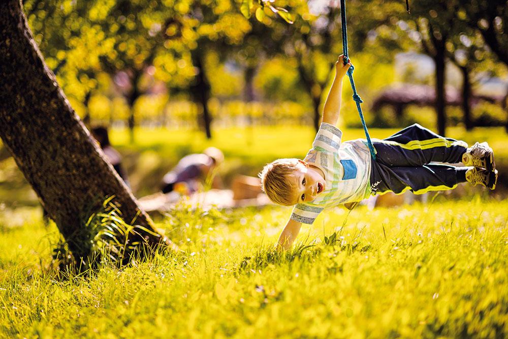 """""""Vyblázniť sa pri strome dá aj vďaka lanu sdrievkom. Zavesia sa naň škôlkari, žiaci, dokonca aj dvadsaťroční dospeláci.""""  Zuzana Matúšová-Girgošková"""