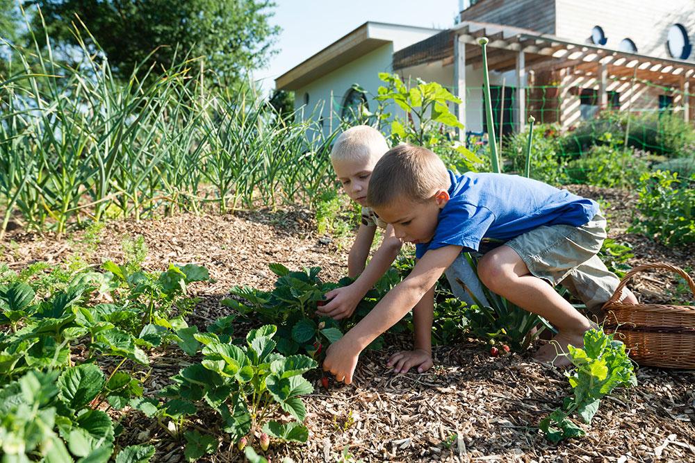 Ako mať krásnu a plodnú záhradu a pritom sa veľa nenarobiť?