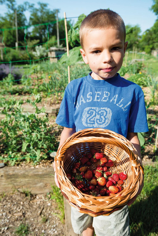 Záhrada, ktorá vonia a chutí. Zuzkine deti sa radi a často túlajú po záhrade. Trávnik im nechýba. Najradšej skúmajú dozreté plody, motýle a divoké zvieratá.