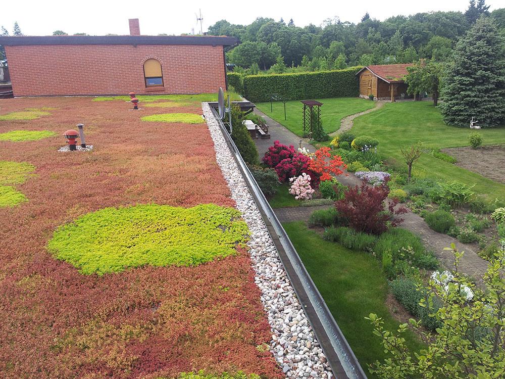 5. časť seriálu o strechách: Zelená strecha Eco-Active