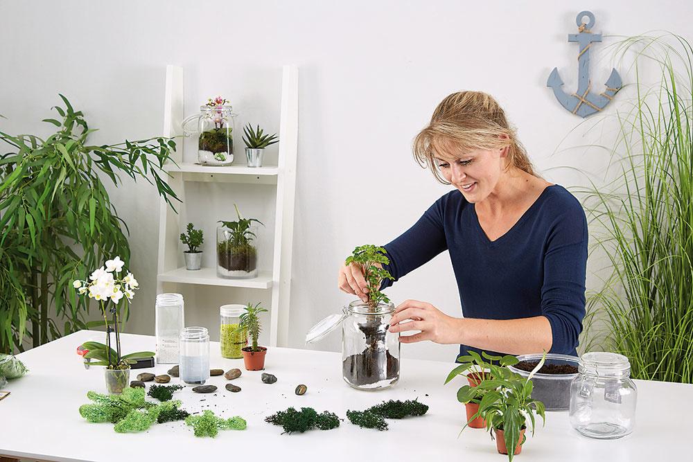Pri výbere rastlín popustíme uzdu fantázii. Našej tvorivosti kladie limity najmä veľkosť nádoby.