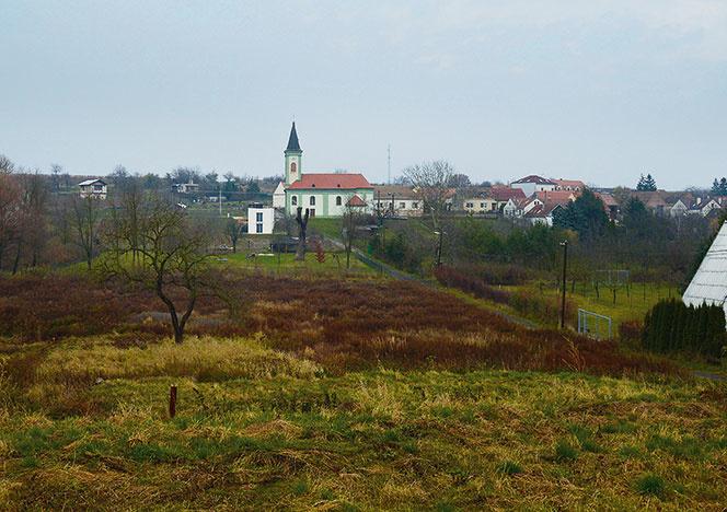 """Socialistický """"šumperák"""" premenili na dôstojný malý domček uprostred vinohradu"""