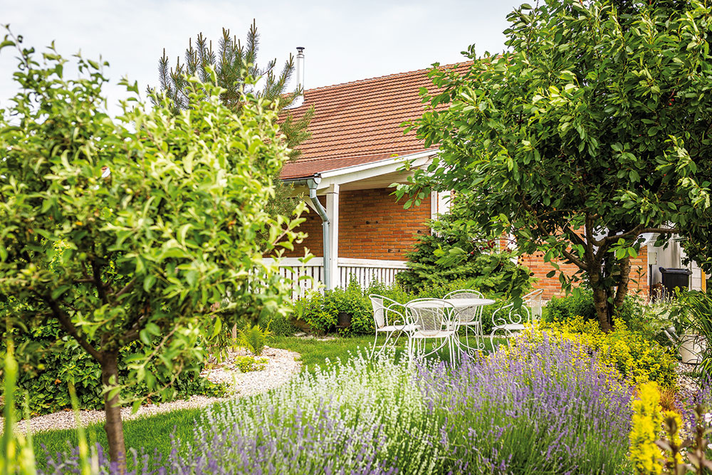 Ovocné stromy spolu sokrasnými drevinami tvoria základnú kostru záhrady. Nájdete tu čerešne avišne, jablone ibroskyne. Oich pravidelný rez sa stará záhradník, ktorý má na starosti aj trávnik.
