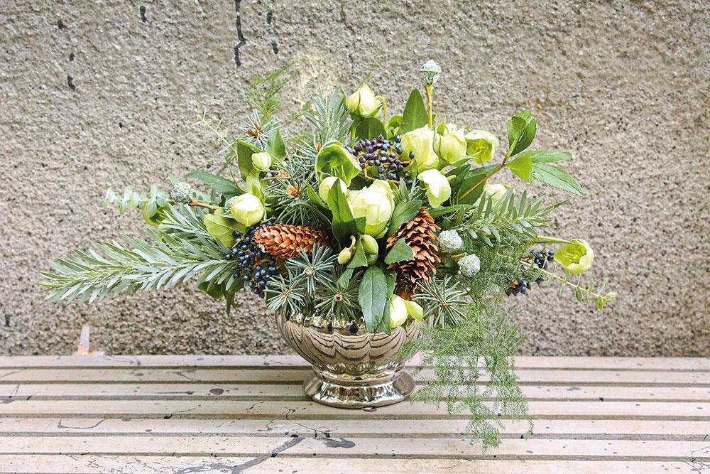 Zimná kytica. Zelený základ je tvorený strieborným smrekom (Picea) asivou akáciou, ktorej sa tiež hovorí mimóza (Acacia/ Mimosa). Vôňu jej dodá eukalyptus (Baby eucalyptus) anetradičný asparágus (Asparagus). Najvýraznejšími kvetmi varanžmáne sú jemná biela čemerica (Helleborus) abiela ruža (Rosa). Kontrast tvoria veľké smrekové šišky apri nich takmer nebadateľné modré guľôčky kaliny (Viburnum) asivé plody eukalyptu (Eucalyptus).