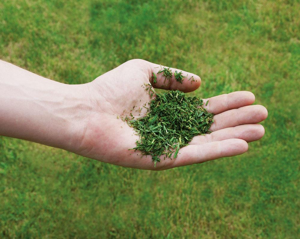 Ako vybrať tú najlepšiu kosačku na trávu