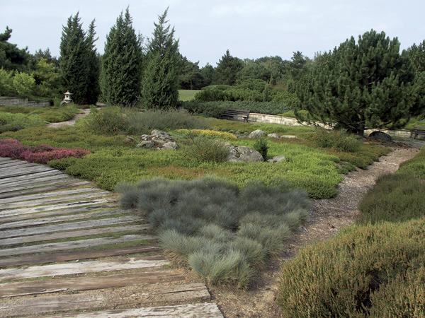 Návrh vresoviskovej záhrady