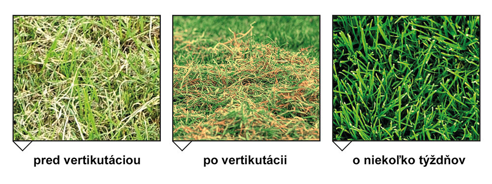 Rozdiel v kvalite trávnika je do očí bijúci.
