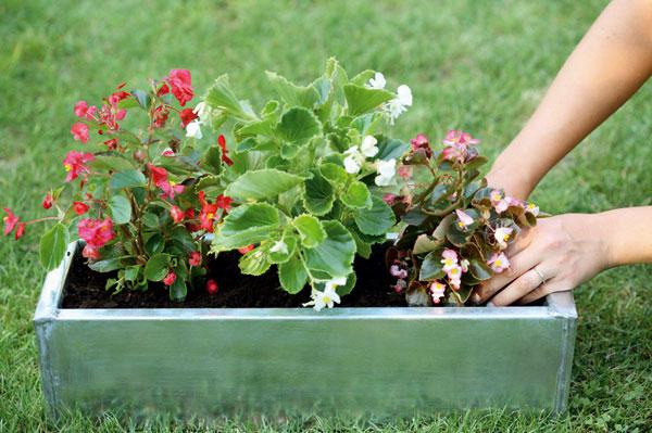 Premena záhradného domčeka