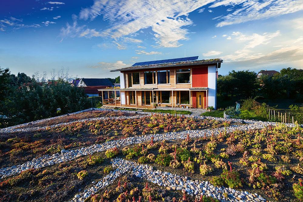 Architektúra rodinného domu vychádza zpasívneho konceptu. Stavba sa otvára smerom kjuhozápadu veľkými zasklenými plochami nielen kvôli výhľadom na pozemok, ale tiež kvôli solárnym ziskom. Smerom na sever, východ izápad sú otvory na dome naopak minimalizované, okná tu plnia funkciu odvetrávania adoplnkového osvetlenia priestoru.