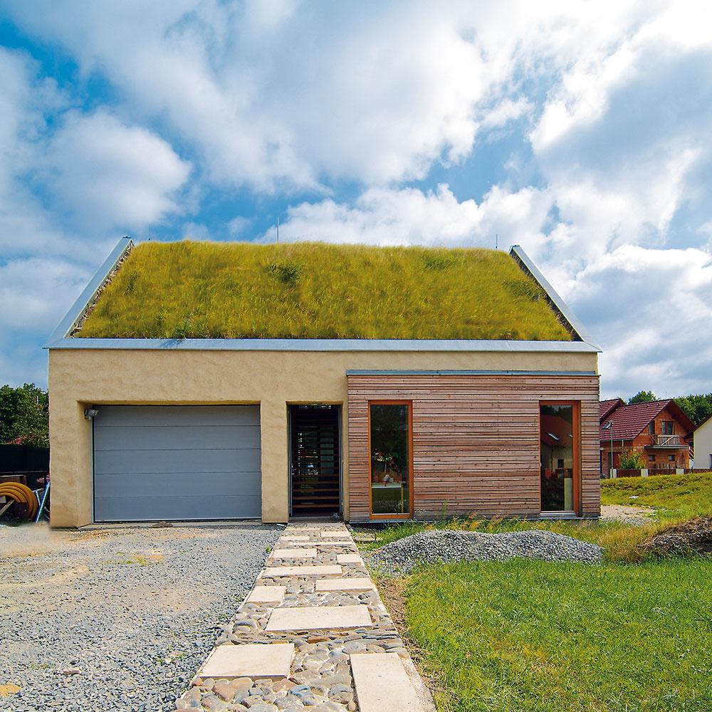 Zeleň môže rásť ako na plochej, tak aj na šikmej streche. Okrem ochrany pred prehrievaním aj premŕzaním strešnej konštrukcie je veľkým plusom zelených striech zlepšenie klímy v okolí domu, ktoré je citeľné najmä v lete. Súvisí so zachytávaním dažďovej vody, s čím je spojené zvýšenie vlhkosti a zníženie teploty v okolí. Zeleň taktiež znižuje prašnosť, spotrebúva CO  a produkuje kyslík.