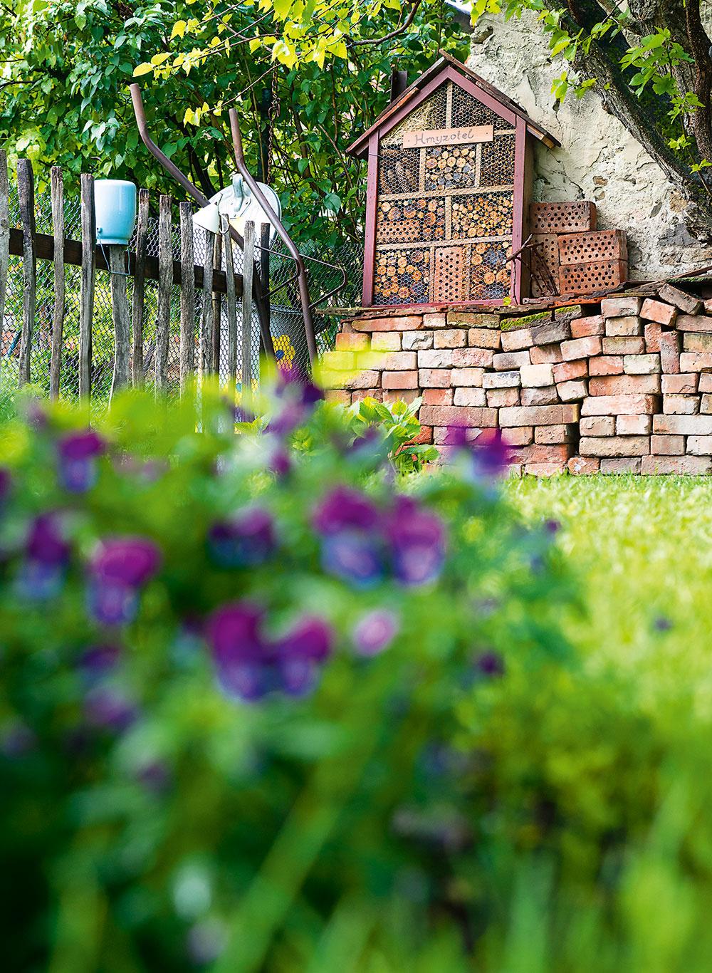 Vsprávnej prírodnej záhrade nesmie chýbať domček pre hmyz. Tento má nielen úctyhodné rozmery, ale dokonca ihrdý nápis – Hmyzotel.