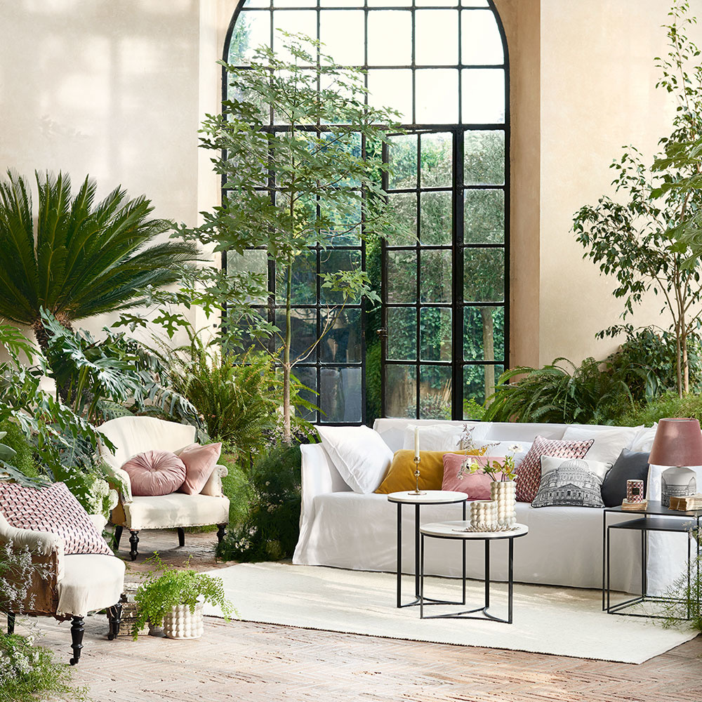 rastliny v obývačke