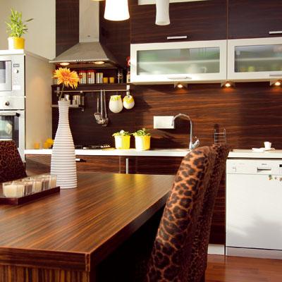 Kuchyňa – dispozícia a ergonómia