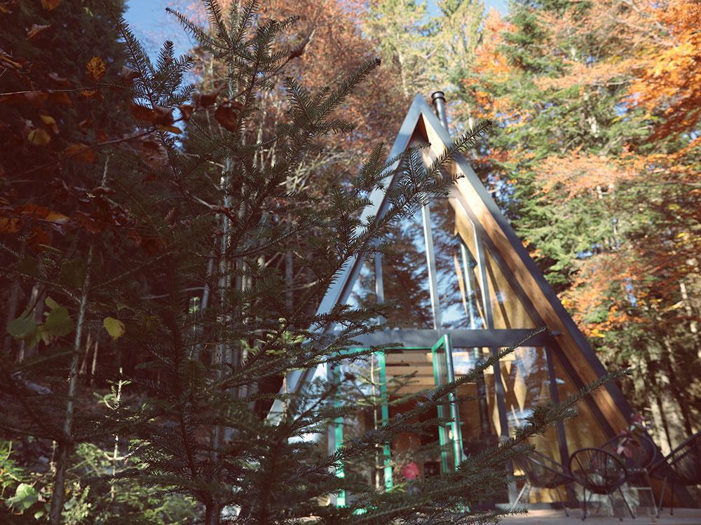 CEZAAR 2019: Cena za najlepší interiér patrí dobovej chate na Donovaloch!