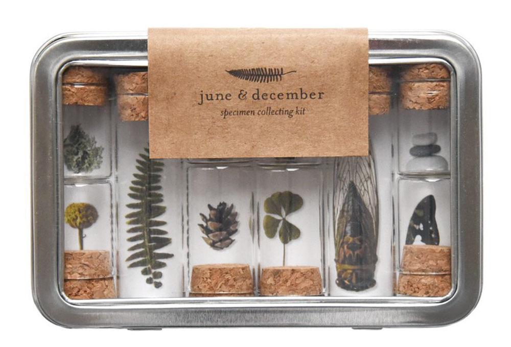 Súprava na rastlinky od značky June & December, obsahuje: 10 fľaštičiek, pinzetu, 6 špendlíkov, návod, 14 × 9,5 cm, 21,44 €/súprava, www.junedecember.com