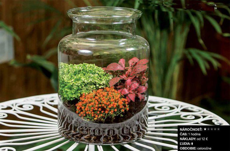 Ako si vyrobiť tropickú minizáhradku do interiéru
