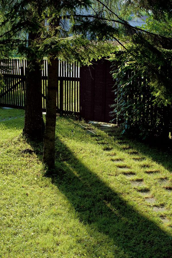 Drevo, kameň na chalupe a v záhrade