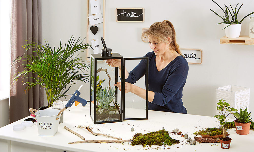 biolampáš s rastlinami a svetielkami