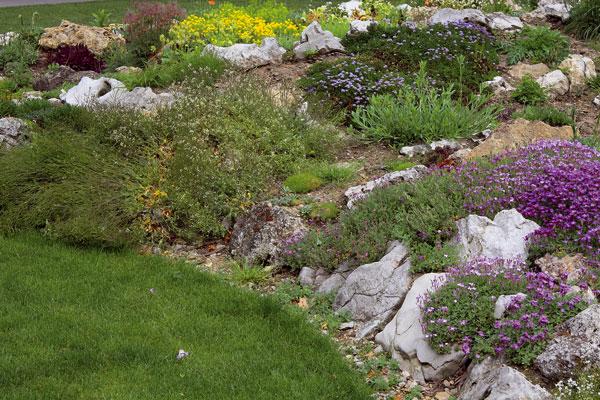 Záhrada na jar