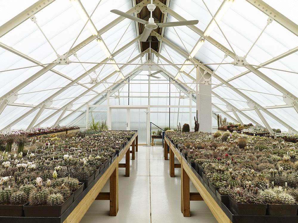 Veľký skleník pre pestovanie kaktusov