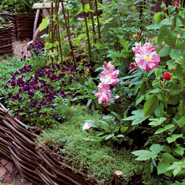 Vidiecka záhrada (2.)