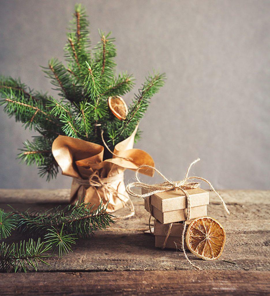 Užitočné vianočné tipy: Ako prežiť Vianoce ekologickejšie a zdravšie