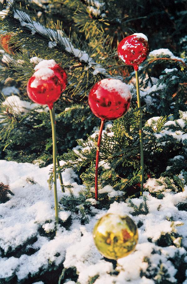 Vo vianočnej záhrade