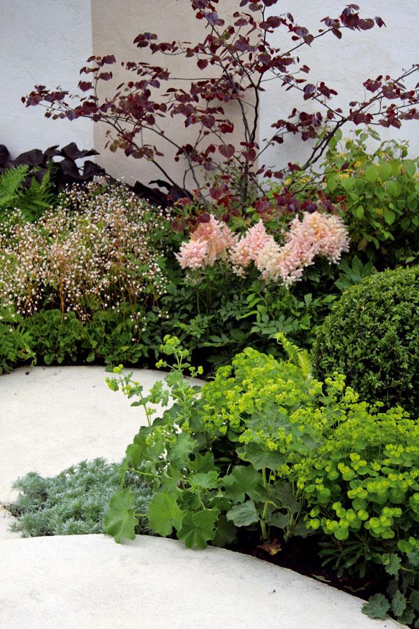 Záhradka ako dlaň