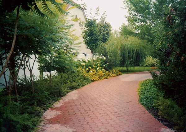 Ako si založiť peknú záhradu