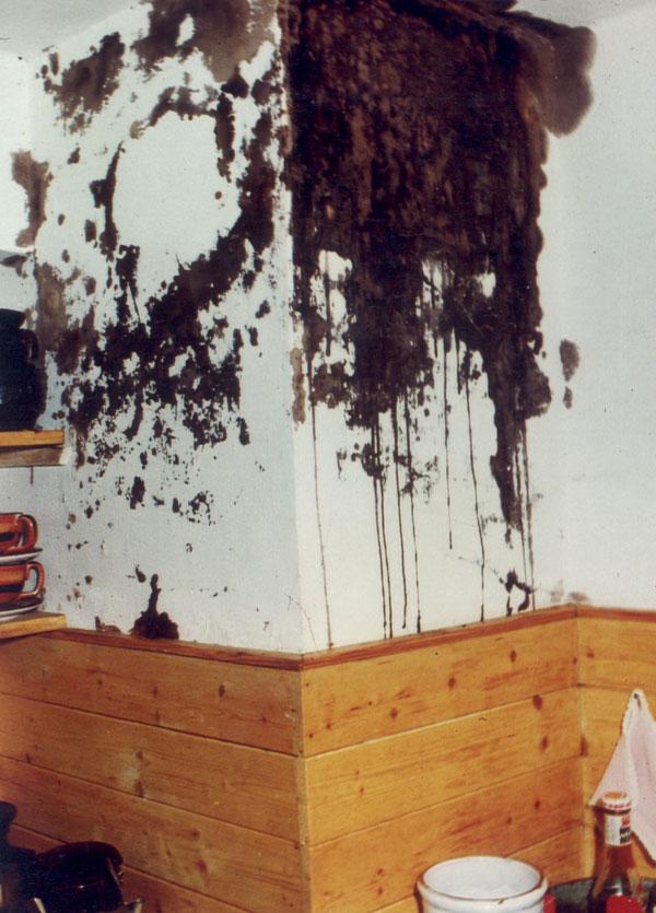 Lacné riešenia komínov prinášajú problémy